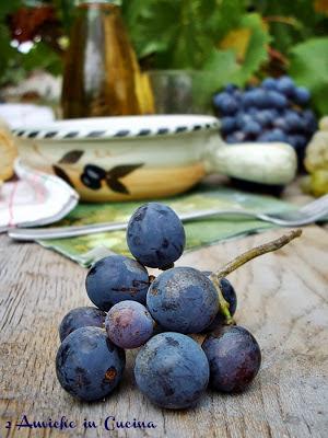 uva nera da vino
