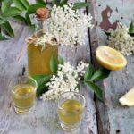 liquore ai fiori di sambuco- limone