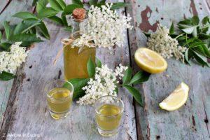 Liquore ai fiori di sambuco e limone