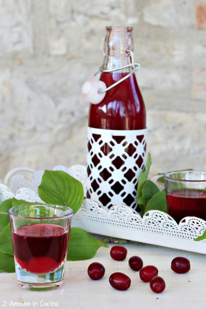 Liquore di corniole fatto in casa