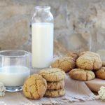 Oatmeal cookie senza lattosio