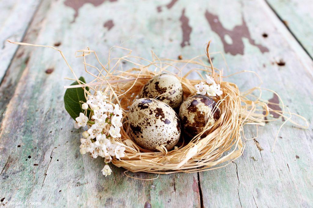 Uova di quaglia, ricette facili per cucinarle al meglio