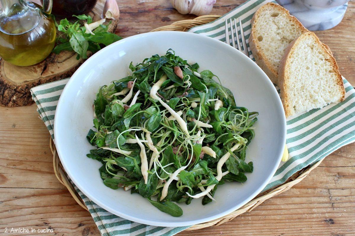 Raponzoli in insalata con pesto di acciughe e aglio