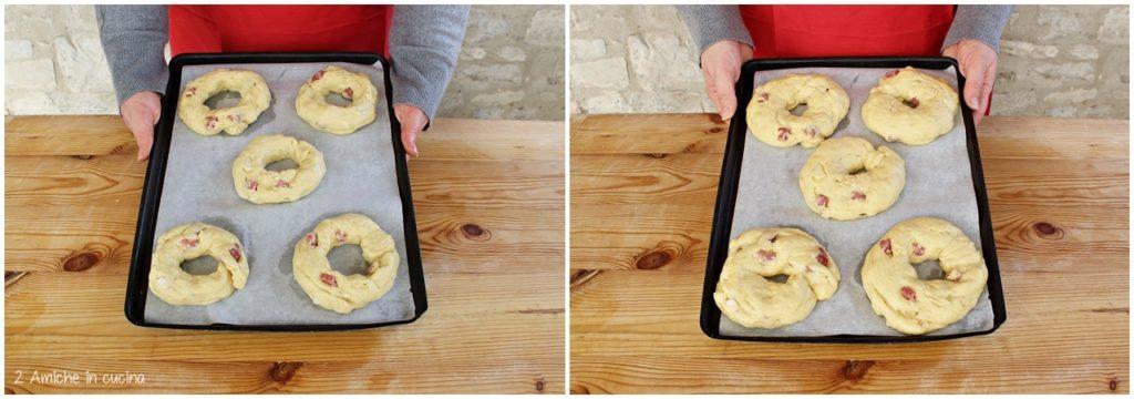 Ciambelle al formaggio e salame lievitate