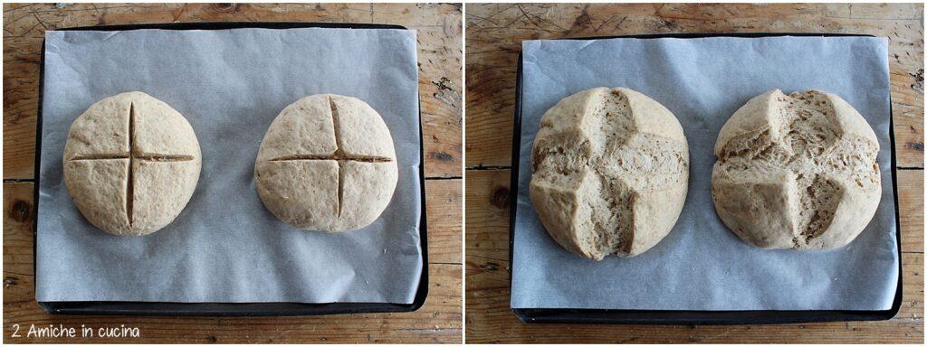 Lievitazione del pane nero