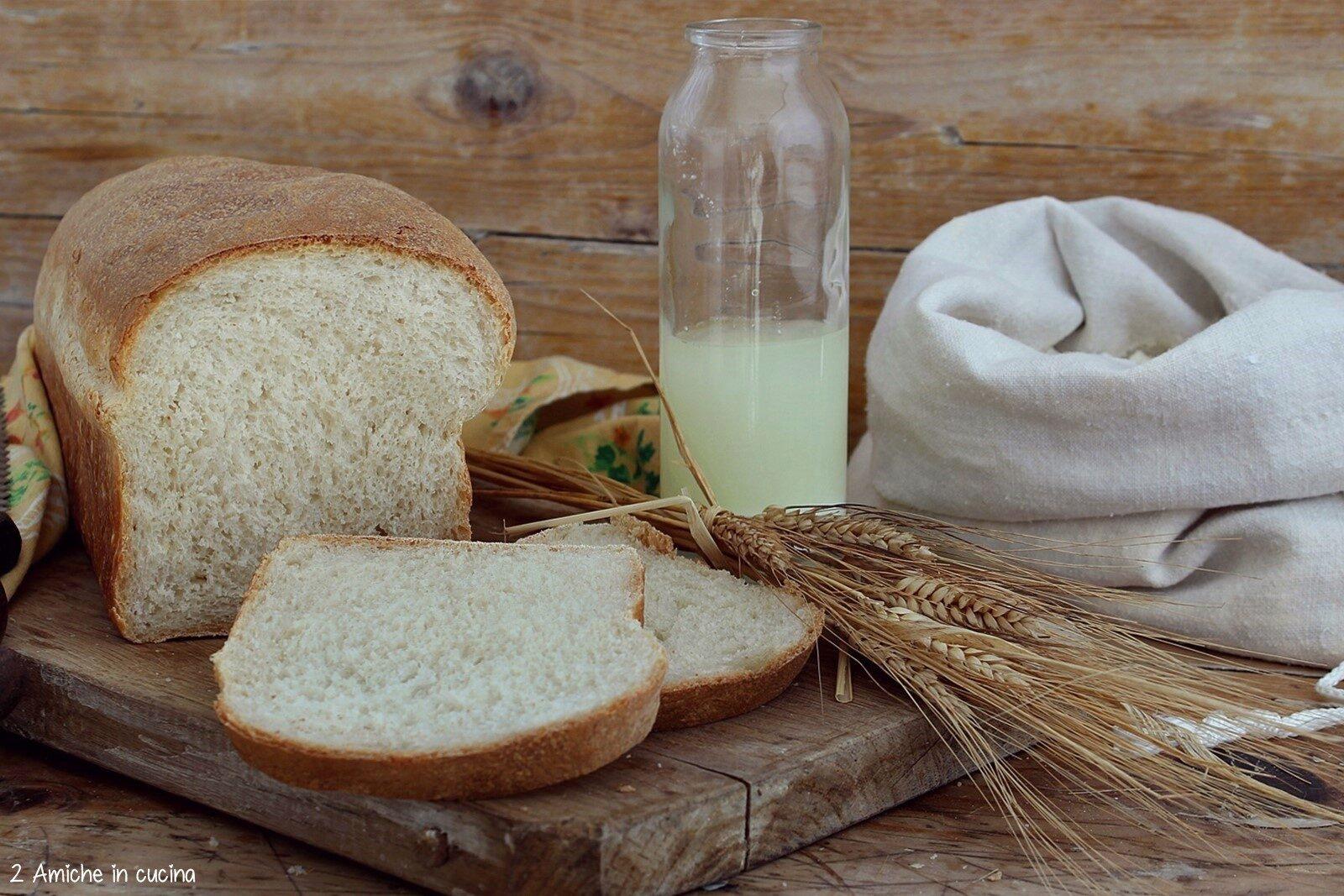 pane impastato con siero di kefir