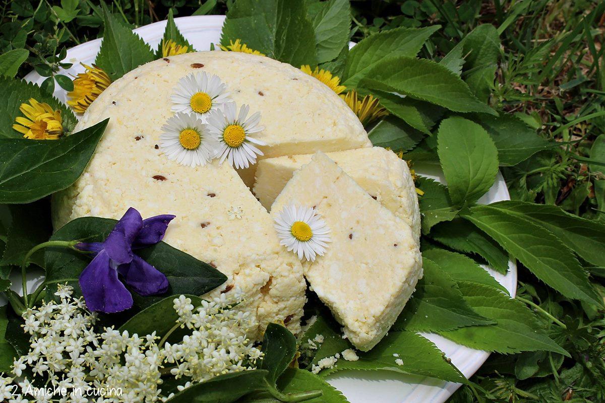 Janu siers, formaggio lettone di San Giovanni