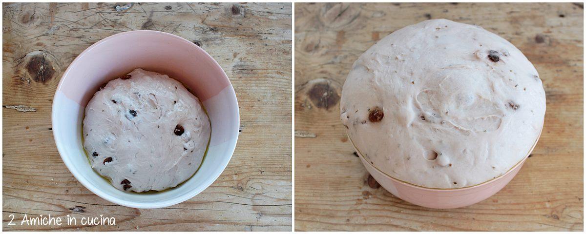 lievitazione del pan mostato